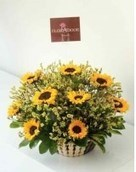 Why is Sending Birthday Flowers to Egypt Always Important? | Online Florist in Egypt | Scoop.it