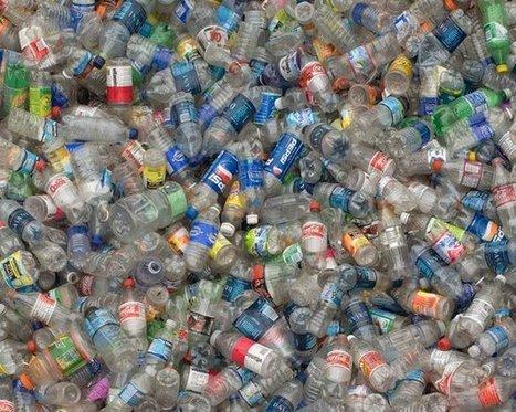 El consumo de agua embotellada en plástico deja huella - lagranepoca | Gestión Ambiental y Desarrollo Sostenible | Scoop.it