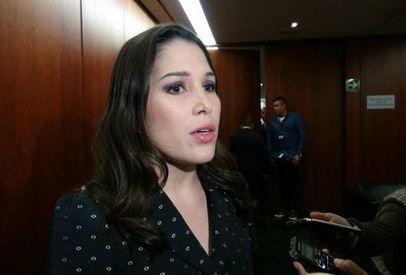 Ximena Puente se apunta para ser fiscal anticorrupción   Educación Superior   Scoop.it