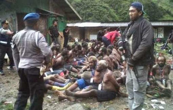 Les Papous fuient la répression militaire   Survival International   Kiosque du monde : Océanie   Scoop.it