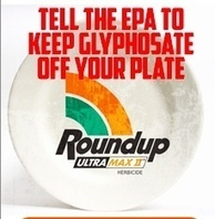 Tell the EPA to keep Monsanto's Roundup and Glyphosate off Your Plate! | Plant Based Transitions | Scoop.it