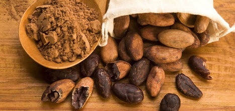 Healing Benefits of Cocoa Butter For Radiant Skin- CureJoy.   Business   Scoop.it