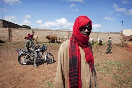 Sahel: en attendant la prochaine sécheresse | Questions de développement ... | Scoop.it