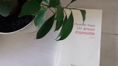Un amour impossible - Christine Angot - La Fille de l'Encre | Découvertes, Culture, City Guide | Scoop.it