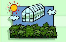 BBC - Gardening - Gardening Guides: Gardening with Children - Photosynthesis | Science | Scoop.it