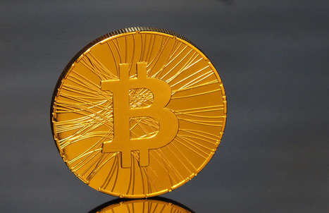 Why Is Bitcoin's Value So Volatile? - Investopedia | Gov & Law- Paige Dowd-Skelly | Scoop.it