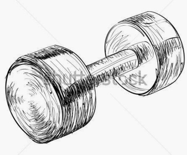 EveryThing about Home Gym Exercise Fitness and Sports Equipment: How to Choose Health Club Equipments for Home Gym | Fitness Equipment in Pune | Scoop.it