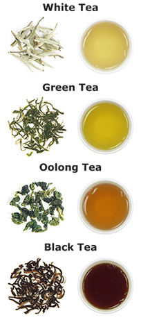 Tea Guide | tea | Scoop.it