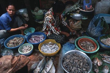How can we better serve women entrepreneurs? | HTS Women Inequality Blog Post | Scoop.it