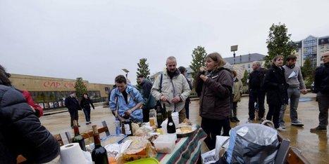 Grippe aviaire : les producteurs de palmipèdes manifestent à Périgueux | Agriculture en Dordogne | Scoop.it