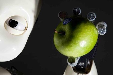 Sensitive robot skin has a memory and knows what it has touched | Une nouvelle civilisation de Robots | Scoop.it