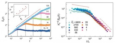 Effective trapping of random walkers in complexnetworks | Social Simulation | Scoop.it