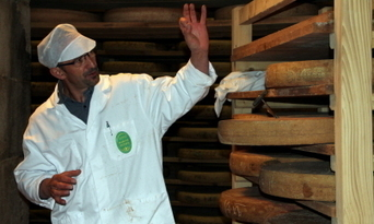 « Ici, on cueille le Comté » | thevoiceofcheese | Scoop.it