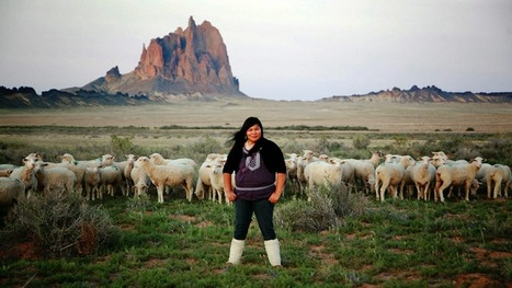 White Wolf: Navajo Teen Harnesses Solar Energy, Wins An Award (VIDEO) | Indigenous | Scoop.it