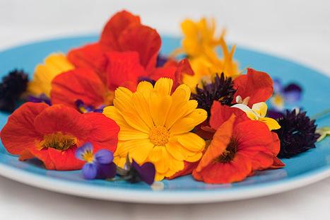 Eetbare bloemen | Bloemenmeisje van amersfoort | Scoop.it