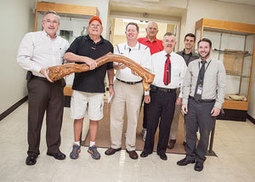 Limb from historic sycamore tree now on display at courthouse - Elizabethton Star | Tennessee Libraries | Scoop.it