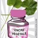 Imprimer responsable avec les encres végétales - Enviro2B | Pédagogie, internet et droit à au lycée | Scoop.it