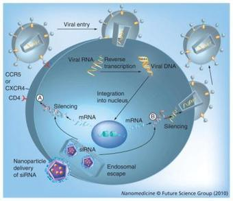 Nanotechnology and HIV/AIDS treatment - Pharmaceutical Intelligence | NanoBioPharmaceuticals | Scoop.it