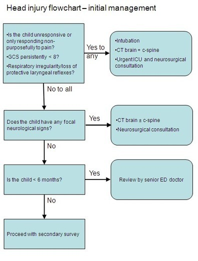 Clinical Practice Guidelines : Head Injury Guideline   PMSC13005 - Management of Severe Head Injuries   Scoop.it