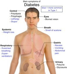 Symptoms of Diabetes - What are the signs and symptoms | Indications Of Diabetes For Better Tomorrow | Scoop.it