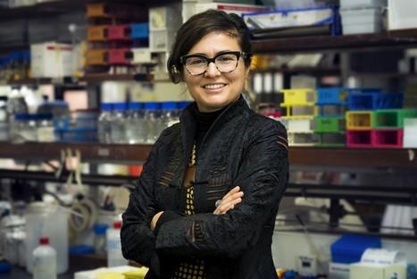 Dois cientistas do IGC ganham bolsas de mais de um milhão de dólares | Portugal faz bem! | Scoop.it