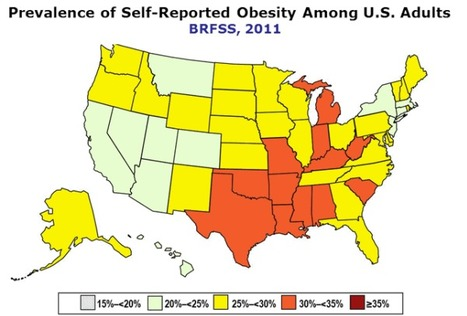 Obesity data by state - Orange is bad! | Heart and Vascular Health | Scoop.it