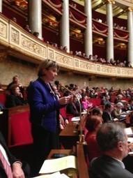 Question au Gouvernement du 30 janvier 2013 | Le blog de Marie Récalde | Marie Récalde | Scoop.it