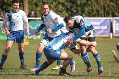 #Rugby / Le RC Saint-André rencontre #Châtellerault ce dimanche à ... | Chatellerault, secouez-moi, secouez-moi! | Scoop.it