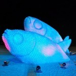 Giant Fish Sculptures Made from Discarded Plastic Bottles in Rio | Colossal | Junctions of Contemporary Art & Education | Scoop.it