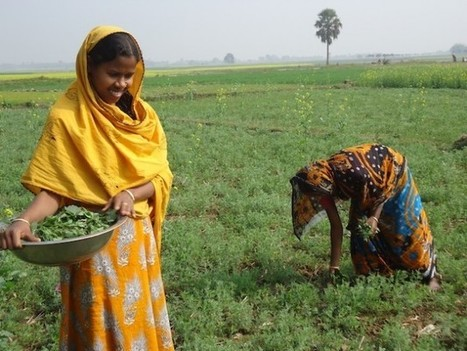 Rural Women Are Leading the Way – Will the World Follow? #1 | Geography | Scoop.it