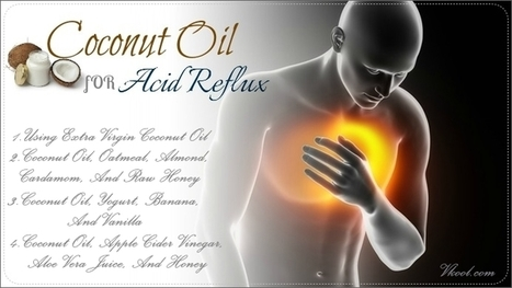 10 Useful Ways On How To Use Coconut Oil For Acid Reflux | Eat Drink Coconut News Daily | Scoop.it
