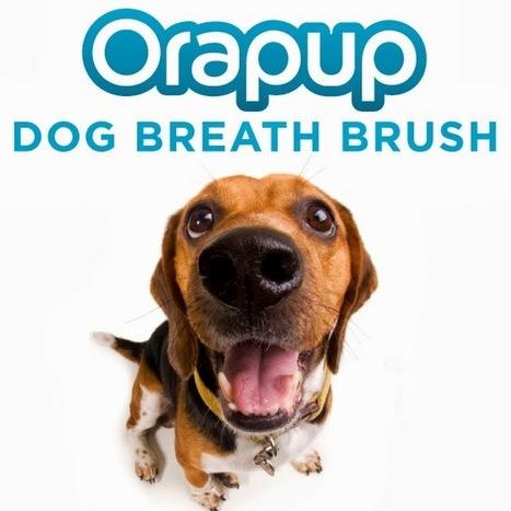 orapup - YouTube | Health Notes | Scoop.it