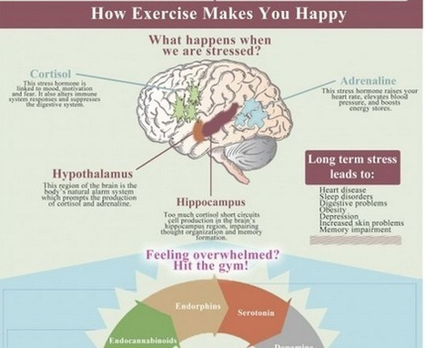 Exactly how Exercising turns on our Happiness. {Infographic} | Articles sur le Yoga | Scoop.it