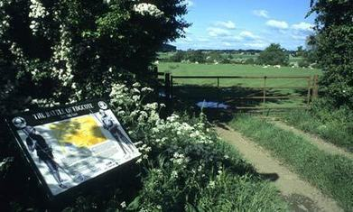 War of Roses graves lie in wait for HS2 route | Archaeology News | Scoop.it