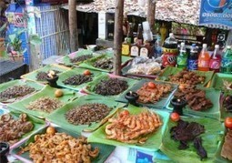 Green Conduct News | Insects are a Sustainable Food Choice ... | eating insects = win | Scoop.it
