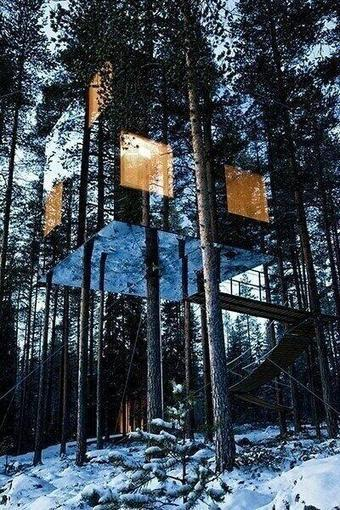 Twitter / Earth_Pics: #43 Mirrored tree house in ... | Earth Day Everyday Everywhere | Scoop.it