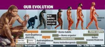 New species of early hominid found | Awesome science | Scoop.it