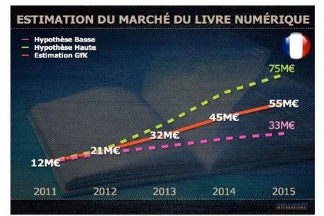 Quelle évolution du marché du livre numérique en France? | education | Scoop.it