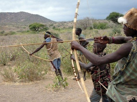 Did hunter-gatherers really spend more energy than modern humans? - Scienceline   Ethnoecology   Scoop.it