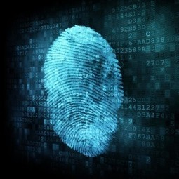 #Biometric Identification Management and the Department of Defense - M2SYS Blog On Biometric Technology | Biometric Identification | Scoop.it