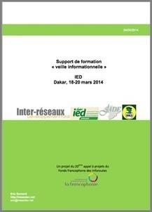 Manuel de formation sur la veille informationnelle | Notebook | Scoop.it