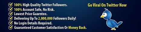 Buying followers on twitter - Socialnoticed.co | Buying facebook likes | Scoop.it