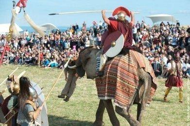 Hannibal et son éléphant arrivent - Sud Ouest   Latin   Scoop.it