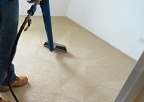 Try Different Carpet Cleaning Options Than Opting For Professional Cleaners | Carpet Cleaning In Adelaide | Scoop.it