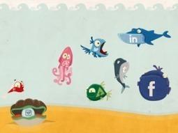 Un ensemble d'icônes des réseaux sociaux | Mes outils de Community Manager débutant | Scoop.it