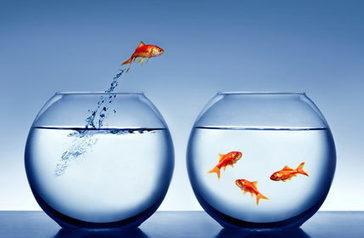 Aménagement de bureaux et bien-être au travail - Manager Attitude | bien-être au travail | Scoop.it