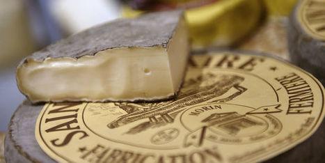 Pourquoi les Etats-Unis ou la Russie peuvent produire mozzarella, jambon de Bayonne ouchinon | Industrie fromagère | Scoop.it