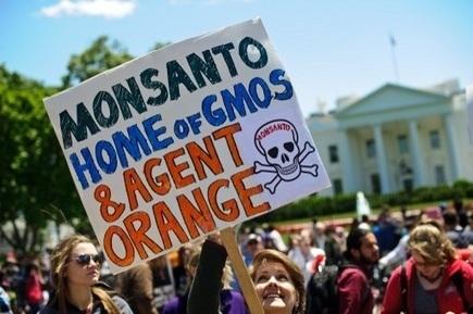 Etats-Unis : des super-OGM pour doper les ventes des herbicides | Toxique, soyons vigilant ! | Scoop.it