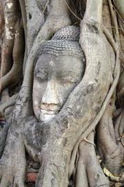 Advaita en Taoïsme: Telefoon vergeten | Advaita | Scoop.it