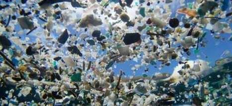 Una carrera contrarreloj para investigar los plásticos que contaminan los océanos   ¡Sí, se puede!   Scoop.it